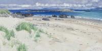 Charles Simpson Storm Island
