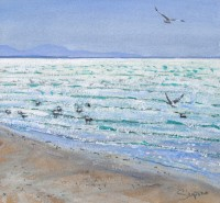 Charles Simpson Uist Gulls