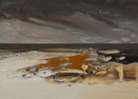 Chris Bushe A Sky Full of Rain Passes By