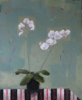 Ann Armitage Orchid And Indian Stripe