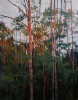 Bernadett Timko Birches at Sunset