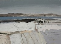 Chris Bushe Blue Loch, Winter Fields