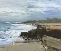Chris Bushe Crashing Waves and Strong Westerlies Saligo Bay
