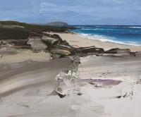 Chris Bushe Hidden Beach Summer Blues Ardnave Point