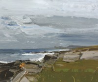 Chris Bushe Rocks Machair and a blustery day saligo bay