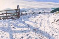 Charles Simpson January Track