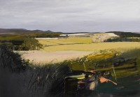 Chris Bushe Green Fields, Distant Bennachie