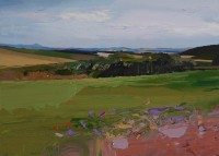 Chris Bushe Summer Fields, Auchintool