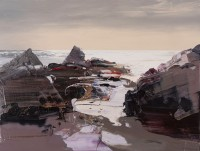Chris Bushe The Atlantic Shone and the Rocks Glowed