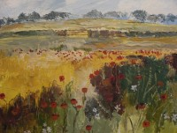 Luke Dillon-Mahon Poppy Field