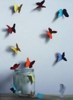 Donald Macdonald The Butterfly Girl