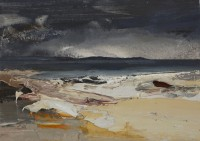 Chris Bushe Evening Headland