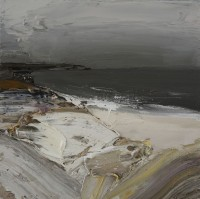 Chris Bushe Grey Half-Light, Wild Cove