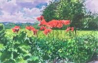 Howard Morgan Poppies II