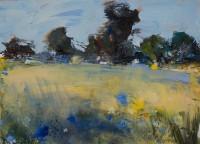 Hannah Woodman Cornflowers
