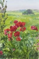 Howard Morgan Poppies I