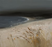 Chris Bushe High Up in the Dunes