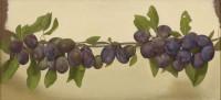 Sian Hopkinson A Branch of Damsons