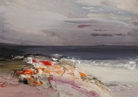 Chris Bushe Jewelled Shoreline in the Evening Sun