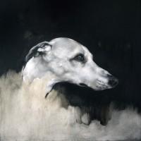 Justin Coburn Dog head study