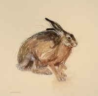 Lara Scouller Brown Hare