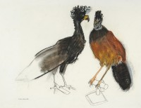 Lara Scouller Fancy Birds