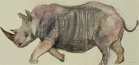 Lara Scouller Rhino