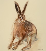 Lara Scouller Startled Brown Hare