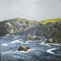 Martin Llewellyn Pwll Deri Pembrokeshire