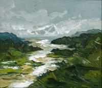 Martin Llewellyn Mawddach Estuary