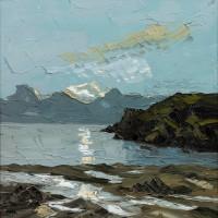 Martin Llewellyn Reflections Porth Dafarch