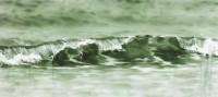 Donald Macdonald, Eoropie Wave