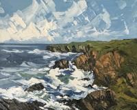 Martin Llewellyn Summer Pembrokeshire