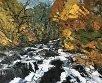 Martin Llewellyn Swallow Falls at Autumn