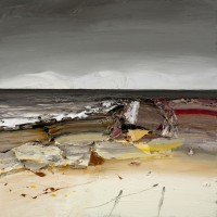Chris Bushe Night Beach