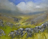 Oona Campbell The First Summer Light on the Moorland Grasses (Arkleside Moor, North Yorkshire)