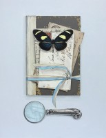 Rachel Ross Book with Letters and Magnifying Glass