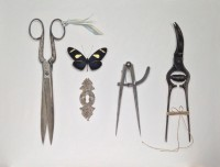 Rachel Ross Heliconian with Arranged Tools and Escutcheon