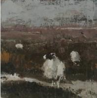 Robert E Wells 3 Sheep