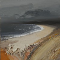 Chris Bushe The Beach that Glows