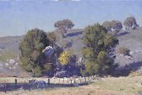 Warwick Fuller The Sheep Paddock. Mudgee